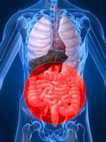 magán gasztroenterológia Székesfehérváron